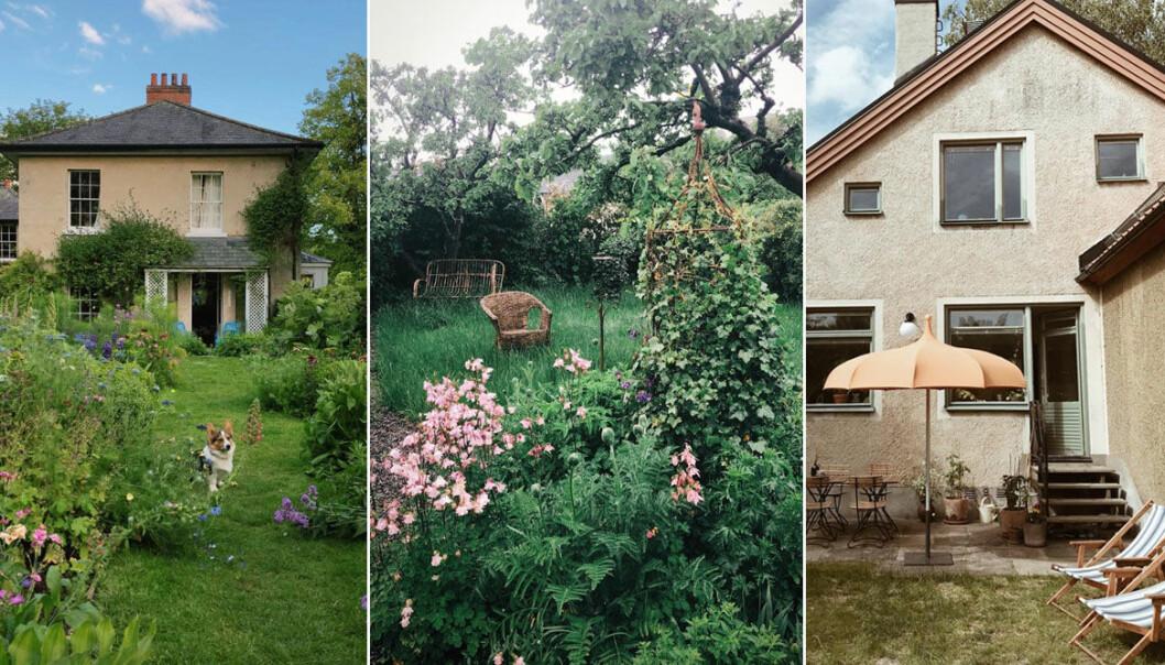 Inspiration: Inredningsprofilernas trädgårdar och uteplatser på Instagram