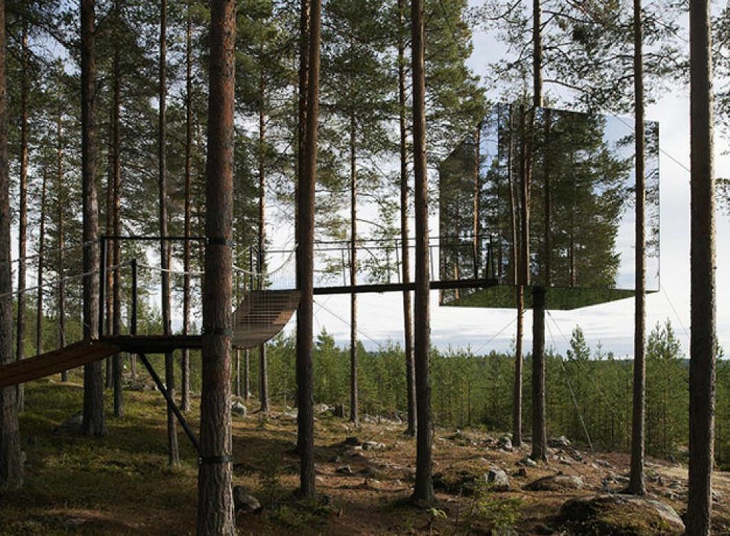 Treehotel, trähotell spa