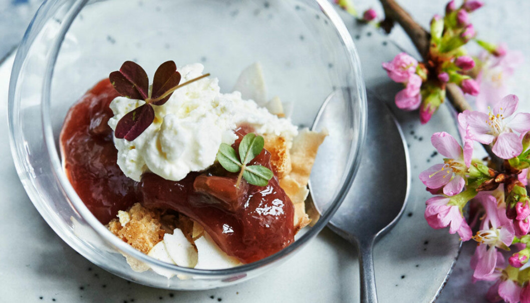 Trifle med rabarber, receot