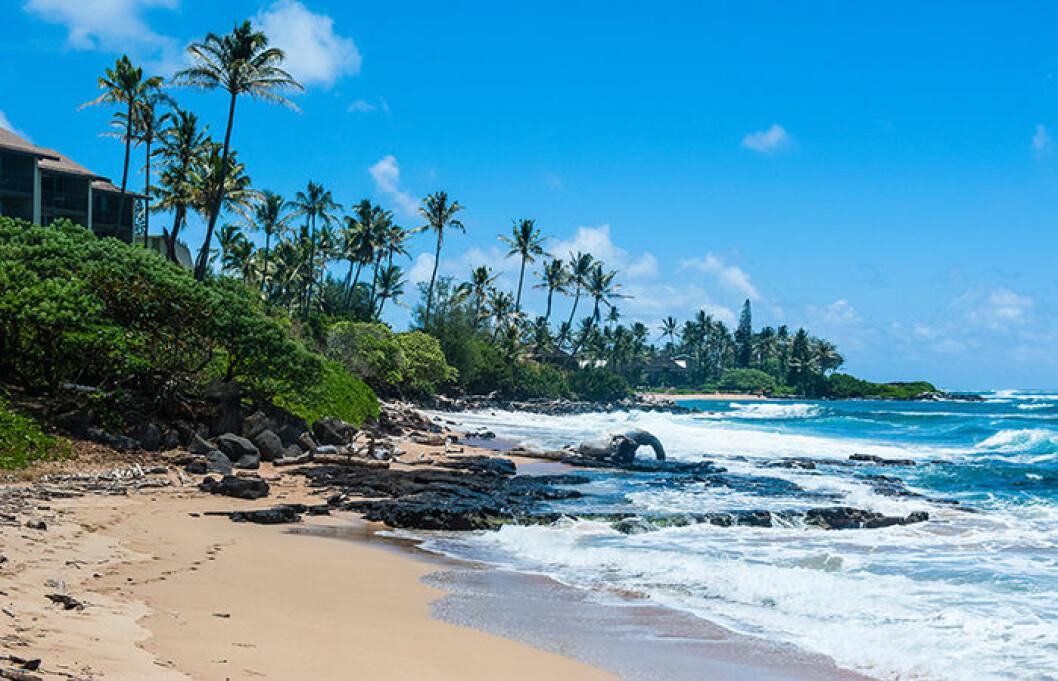 Kapaa på Hawaii är populärt.