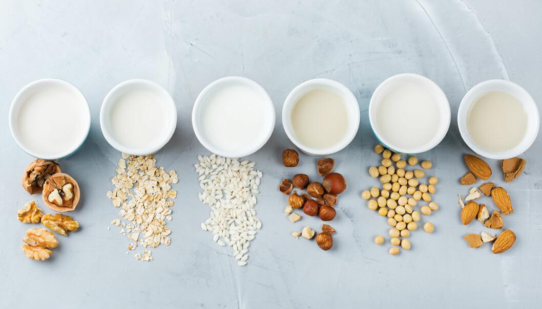 Växtbaserad mjölk –5 grundrecept