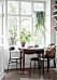 Gröna växter i ljust kök compact living-matplats