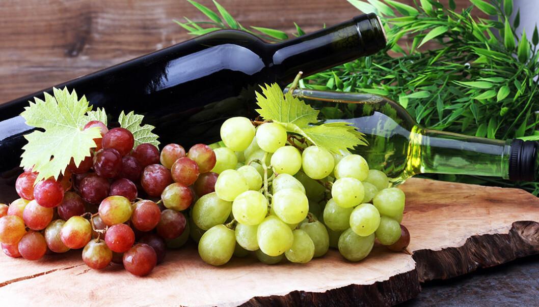 Vet du om vinet är veganskt?