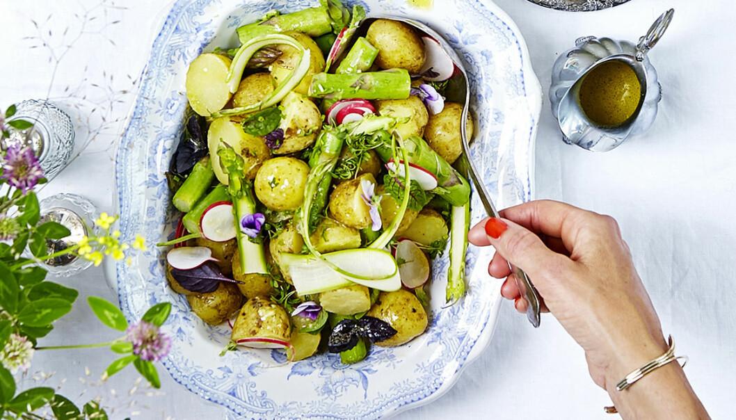 recept vegan potatissallad