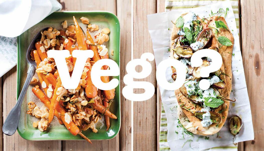 Vegetarian, vegan & lakto-ovo, vad är skillnaden?