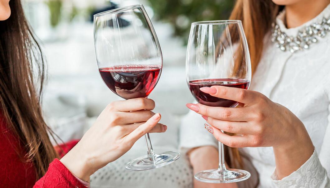 Lär dig mer om vinet så smakar det bättre!