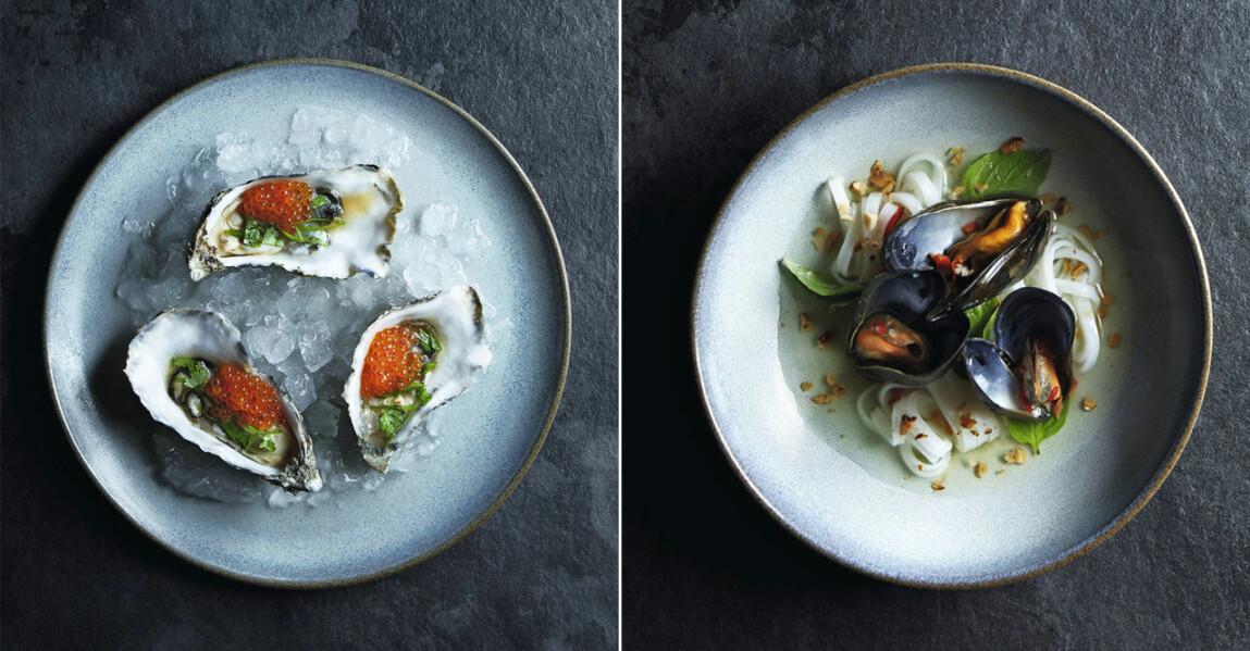 Tips på vin till skaldjur och vin till ostron
