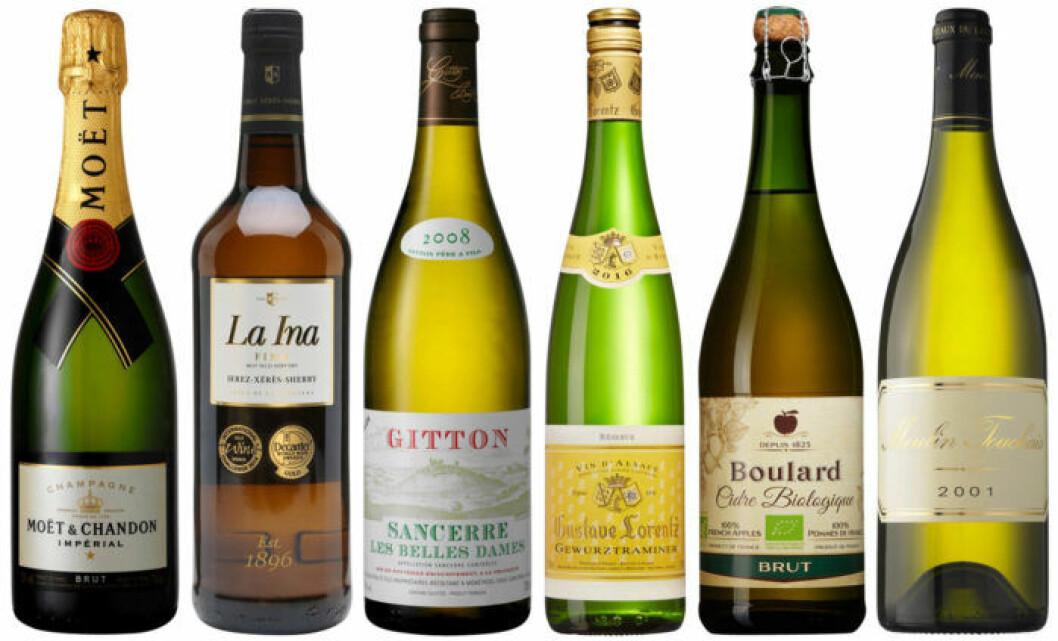 Sex goda viner som passar till ost.