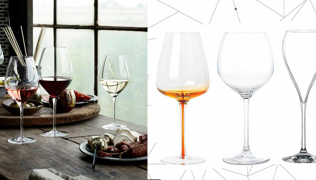 Rätt vinglas rosé, vitt, rött och champagne