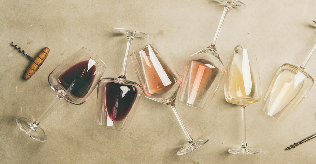 Tipsen för att lyckas med vinprovningen hemma, från experten
