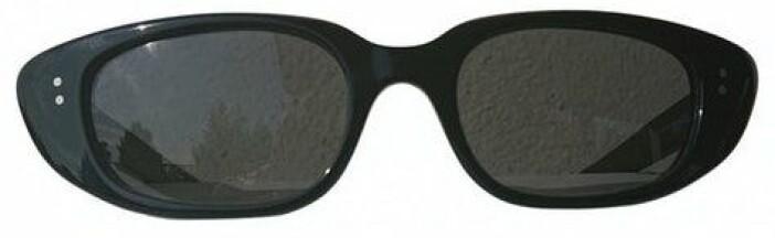 Vintage solglasögon från Celine via Vestiaire Collective.